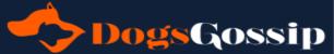 DogsGossip.com logo