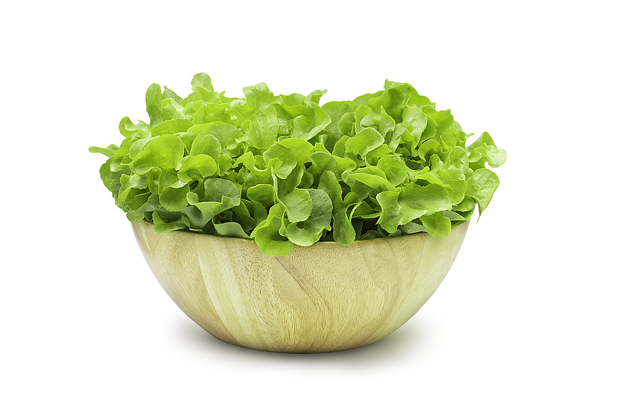 is lettuce bad for dogs