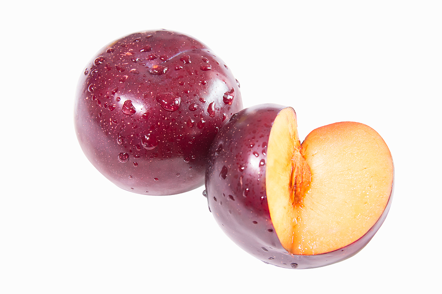 can dogs eat plums? is it safe