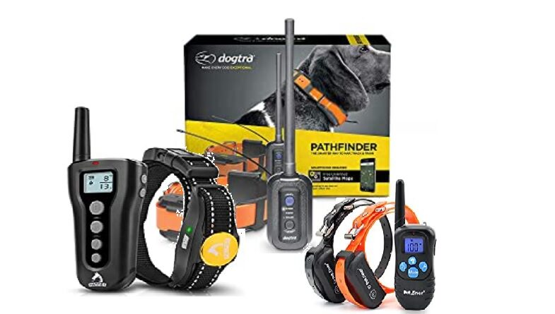 best dog training collars 2020